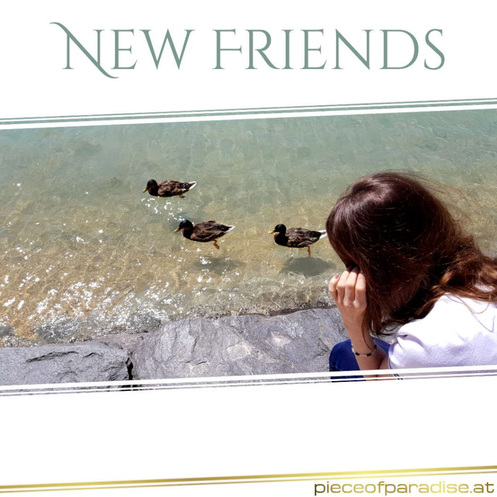Spiritualität | New friends